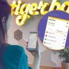 Получавайте онлайн защита на неприкосновеността на личния живот с TigerVPN за под $ 50